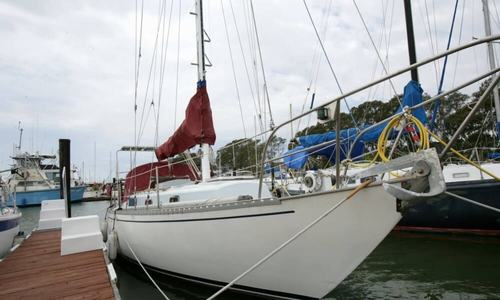 Image of Rustler 31 for sale in United States of America for $25,500 (£19,789) Vallejo, California, United States of America