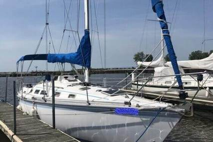 Hunter 34 for sale in United States of America for $16,900 (£13,011)