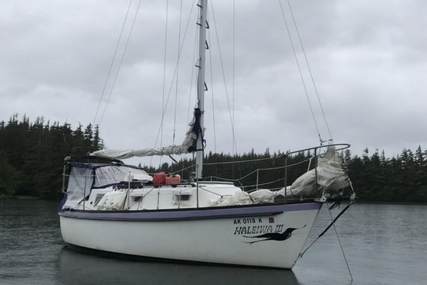 Pacific Boats 25 for sale in United States of America for $22,000 (£16,645)