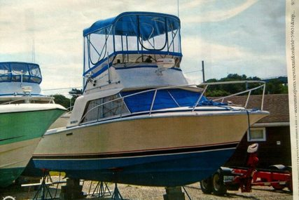 Phoenix 29 Convertible for sale in United States of America for $16,500 (£12,564)