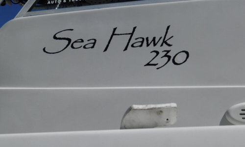 Image of Caravelle Sea Hawk 230 for sale in United States of America for $29,999 (£22,995) Avon-by-the-sea, New Jersey, United States of America
