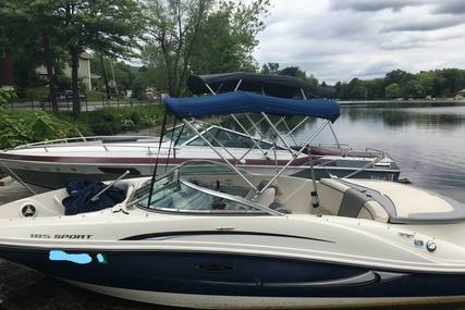 Sea Ray 185 Sport for sale in United States of America for $15,500 (£11,699)