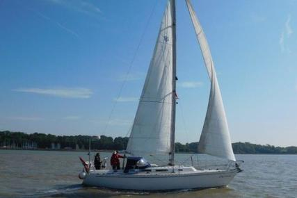 Spirit 36-3 for sale in Netherlands for P.O.A. (P.O.A.)