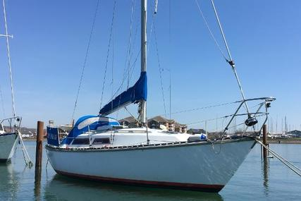 Trapper 501 for sale in United Kingdom for £7,500