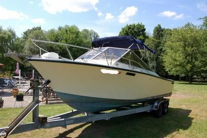 SeaCraft 23 Scepter for sale in United States of America for $12,900 (£10,406)