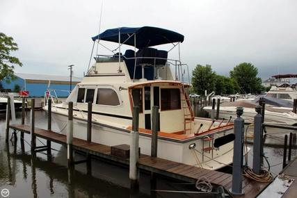 Egg Harbor Convertible for sale in United States of America for $41,000 (£31,427)