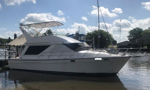 Image of Bayliner 3988 for sale in United States of America for $94,500 (£71,811) Delcambre, Louisiana, United States of America