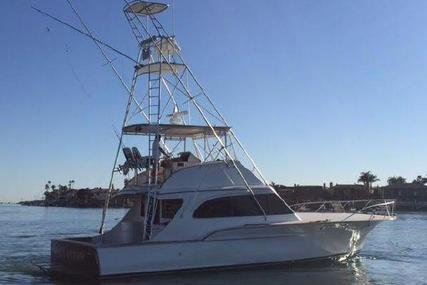 Buddy Davis Sportfish for sale in United States of America for $179,000 (£136,298)