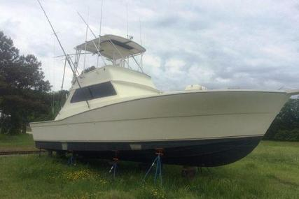 Viking Yachts Convertible for sale in United States of America for $74,999 (£58,814)