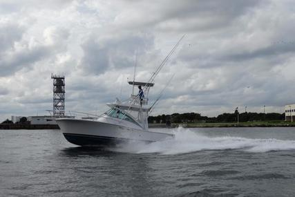 Luhrs 32 Open for sale in United States of America for $79,000 (£61,588)