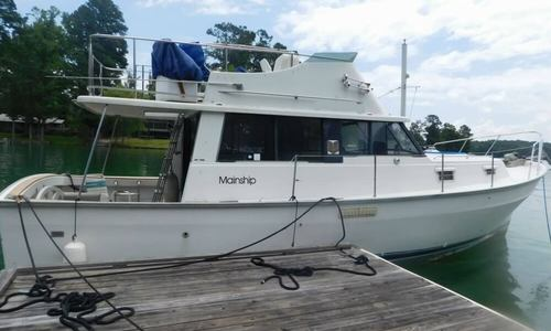 Image of Mainship 34 Diesel Cruiser for sale in United States of America for $29,975 (£21,802) Equality, Alabama, United States of America