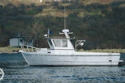 Homebuilt 28 Commercial Quality Workboat for sale in United States of America for $90,000 (£64,546)
