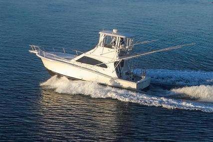 Luhrs Convertible for sale in United States of America for $185,000 (£144,226)