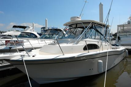 Grady-White Marlin 300 for sale in United States of America for $125,000 (£96,289)