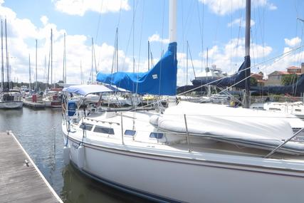 Catalina 30 MkII for sale in United States of America for $19,500 (£14,876)