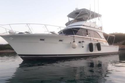 Bertram 46.6 for sale in Greece for €180,000 (£158,440)