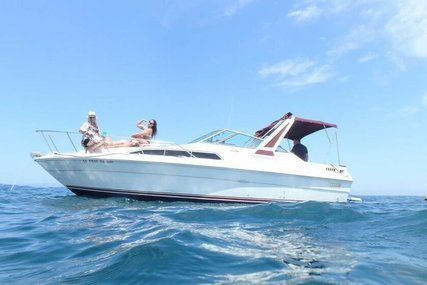 Sea Ray 270 Sundancer for sale in United States of America for $17,500 (£13,386)