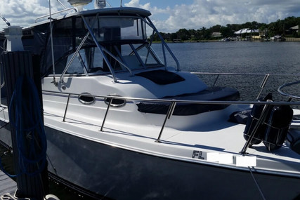 Baha Cruisers 296 King Cat for sale in United States of America for $59,000 (£45,135)