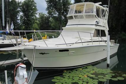 Viking Yachts Open Bridge for sale in United States of America for $32,800 (£24,946)