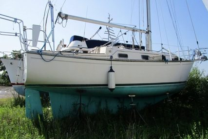 Island Packet 31 for sale in United States of America for $49,500 (£37,998)