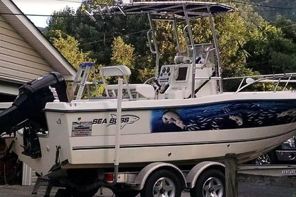 Sea Boss 21 for sale in United States of America for $16,000 (£12,474)