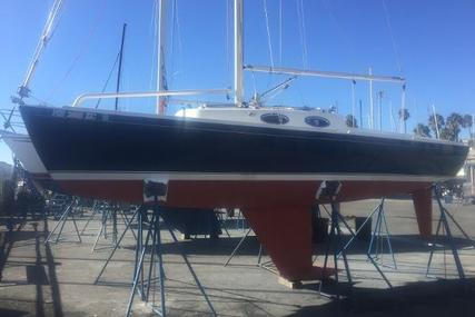 Schock Harbor 25 for sale in United States of America for $56,900 (£43,831)