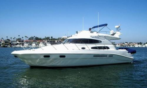 Image of Sealine T47 for sale in United States of America for $299,000 (£234,945) Newport Beach, California, United States of America