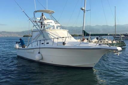 Rampage 38 Express for sale in Jamaica for $189,000 (£143,712)