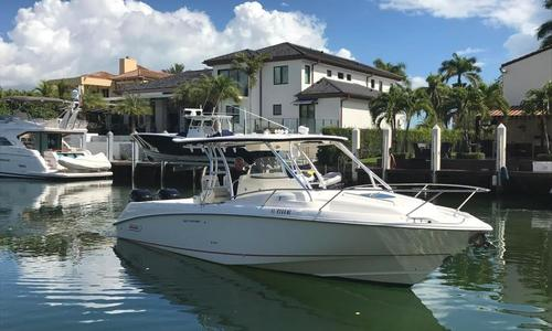 Image of Boston Whaler 320 Outrage for sale in United States of America for $134,500 (£101,347) Miami, Florida, United States of America