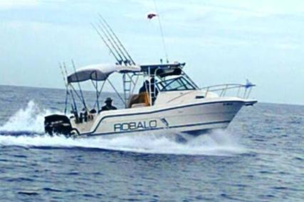 Robalo 2440 Walkaround for sale in United States of America for $25,500 (£19,803)