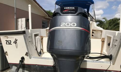 Image of Mako 258 for sale in United States of America for $17,900 (£14,338) Miami, Florida, United States of America