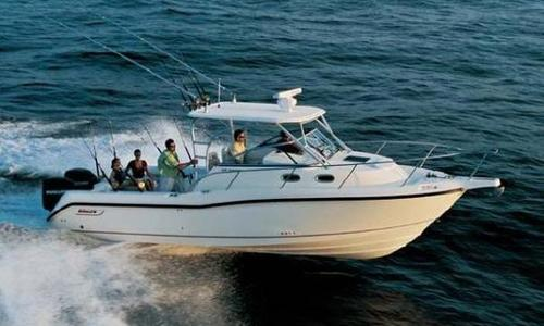 Image of Boston Whaler Conquest 305 for sale in United States of America for $129,000 (£103,179) Marina del Rey, CA, United States of America