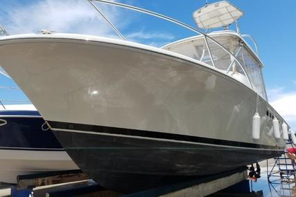 Luhrs Open for sale in United States of America for $69,000 (£52,417)