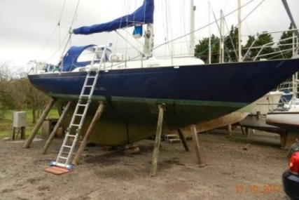 Rustler 31 for sale in United Kingdom for £24,995