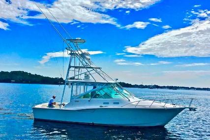 CABO 35 Express for sale in United States of America for $229,900 (£176,482)