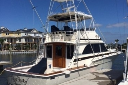 Bertram 46 for sale in United States of America for $68,900 (£52,344)