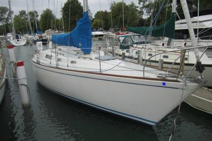 Pearson 36 for sale in United States of America for $16,500 (£12,535)