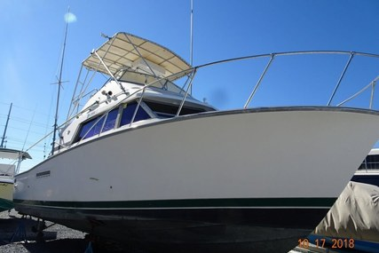 Bertram 33 SF for sale in United States of America for $35,000 (£28,297)