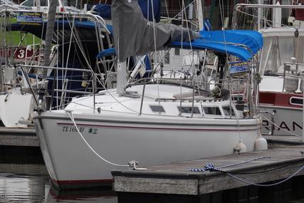 Catalina 30 for sale in United States of America for $19,900 (£15,338)