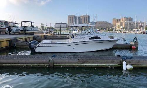 Image of Grady-White Marlin 300 for sale in United States of America for $95,000 (£73,518) Galveston, Texas, United States of America