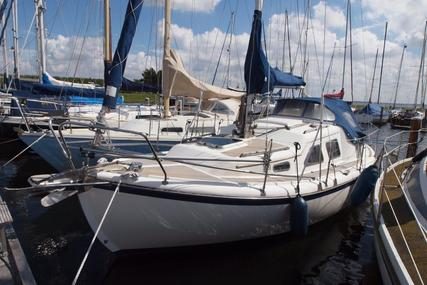 MIDGET 26 for sale in Netherlands for €24,500 ($28,039)