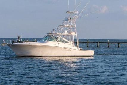 CABO 40 Hardtop Express for sale in United States of America for $310,000 (£245,698)