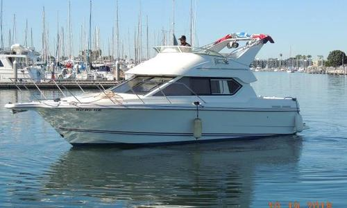 Image of Bayliner Ciera 2858 Command Bridge for sale in United States of America for $39,900 (£30,969) Marina del Rey, CA, United States of America