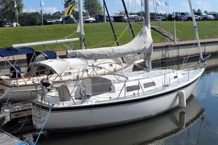 Cal Yachts 31 for sale in United States of America for $16,500 (£12,754)