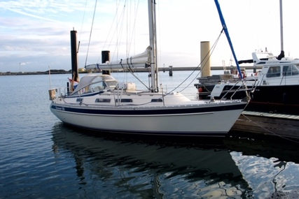 Hallberg-Rassy 31 for sale in Netherlands for €64,500 (£58,205)