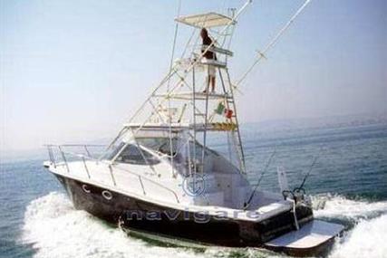 Cantiere Gregorini di MAX 37 H.T. CON TUNA for sale in Italy for P.O.A.