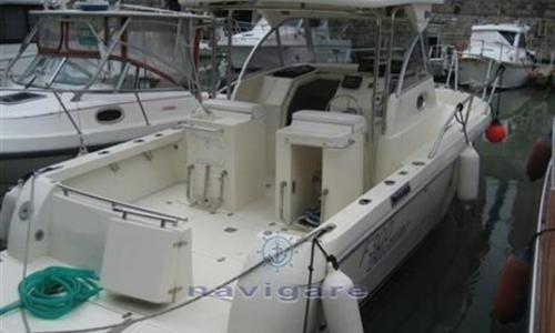 Image of ZETA GROUP F300 BLUETIME for sale in Italy for €50,000 (£43,596) Toscana, Italy