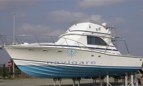 Image of Bertram 38 FLY for sale in Italy for €60,000 (£53,897) Toscana, Italy