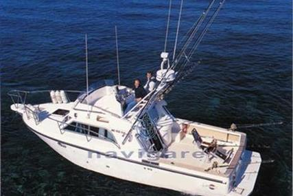 Rio 900 Fish for sale in Italy for €59,000 (£52,004)