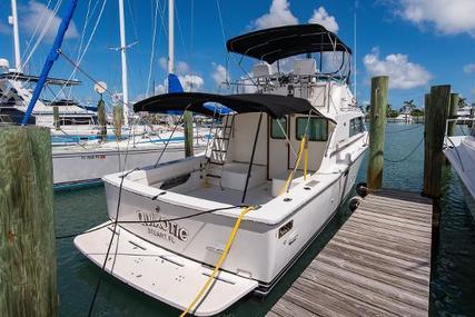 Bertram Flybridge for sale in United States of America for $49,900 (£39,638)